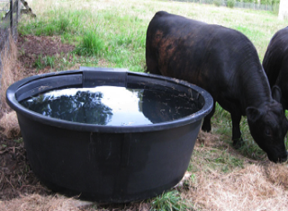 round poly trough